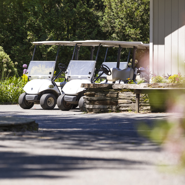Golf Cart Rentals at LMCC